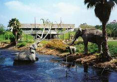 You went on a school field trip to the La Brea Tar Pits. | 35 Signs You Grew Up In Los Angeles In The'90s