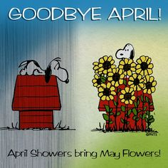 Goodbye April quotes quote may months snoopy april may quotes goodby april Snoopy always reminds me of the love of my life and his kd He was my charlie brown Hello May Quotes, April Quotes, Peanuts Cartoon, Peanuts Snoopy, Schulz Peanuts, Welcome May, Snoopy Quotes, Charlie Brown And Snoopy, Snoopy And Woodstock