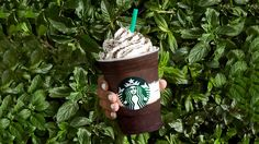 Starbucks' New Midnight Mint Mocha Frappuccino Is the Plain, Brown Drink We've Been Waiting for   Food & Wine