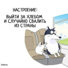 Маришкины мечты..... — Фото | OK.RU Sarcasm Humor, Sad Girl, Work Quotes, Good Thoughts, Cute Illustration, Satire, In My Feelings, Have Fun, Funny Quotes