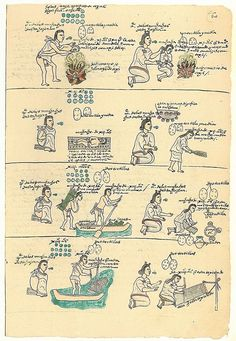 Codex Mendoza, a description of Aztec history & daily life, written circa 1540