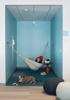 Rapt Studio (США). Офис Eventbrite: гамаки, трибуны, вело-гараж : «Д.Журнал» — журнал о дизайне и архитектуре
