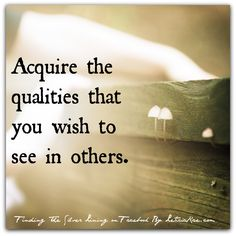 Acquire the qualities that you wish to see in others.  #LeticiaRae #quote #globalchange #WUVIP