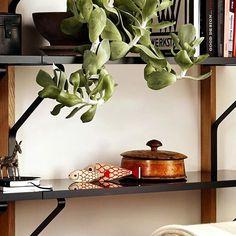 Si has descubierto gracias a las Wooden Dolls tu pasión por el coleccionismo, no puedes quedarte sin la familia de peces, la ultima incorporación a la colección de figuras decorativas de Alexander Girard. #DomésticoShop #design #designinterior #interiordesign #interior4you #interior123 #interiordecor #interiorstyling #instahome #home #nordichome #interiorlovers #decoration #love #styling #homedecor #interiorinspiration #color #homestyle #beautifulview #darlingweekend #mastersofwhiteness…
