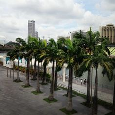 Summer in december... #Singapore | Flickr – Condivisione di foto!