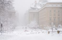 Washington, DC at the Height of the Storm (by Mark. I Love Snow, Winter Love, Great Places, Places To Go, Beautiful Places, Snow In Washington Dc, Snowy Day, Cool Countries, City Living