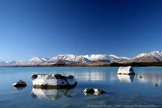 Living the Dream: A Wild Journey Across New Zealand