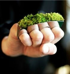 Gardening Humor: Chia Pet Brass Knuckles? I want to grow a garden that I can always take with me.