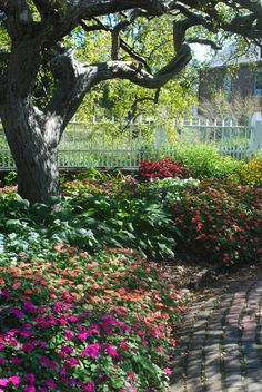 Victorian formal gardens at Prescott park - Portsmouth