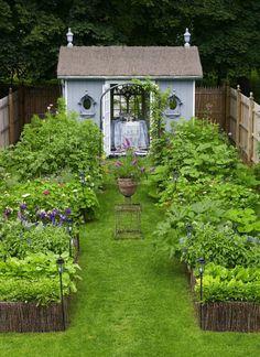 Old Moss Woman's Secret Garden