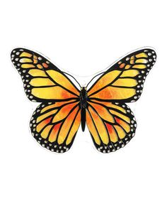 Take a look at this Monarch Butterfly Plaque by Joan Baker Designs on #zulily today!