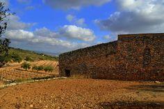 Antic mas, vinya i oliveres, Albinyana, Baix Penedès.