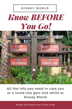 Be prepared BEFORE you leave for Disney World in case you get sick, all the vital information you'll need to have on hand! Disney Dining Tips, Disney On A Budget, Disney World Vacation Planning, Orlando Vacation, Walt Disney World Vacations, Disney Planning, Disney Travel, Disney Parks, Disney World Tips And Tricks