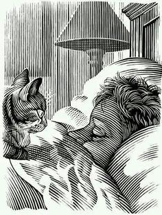 Gato panóptico