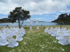Traditional Seating Rose Petaled Aisle And Clical D Ceremony Area At Mahinepua Waterfront Beach House