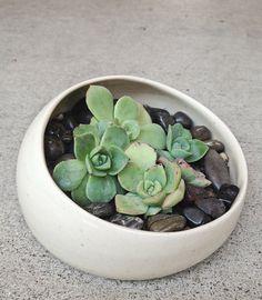 gift garden home decor Handmade ceramic mini succulent planter garden in lovely satin cream