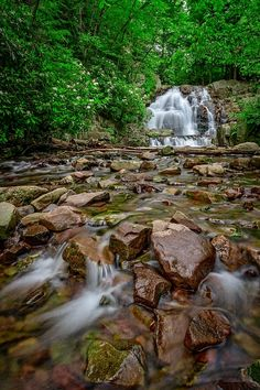 Photograph - Forest Peace At Hawk Falls by Rick Berk , Beautiful World, Beautiful Places, Natural Background, Beautiful Waterfalls, Oh The Places You'll Go, Dream Vacations, The Great Outdoors, Mother Nature, State Parks