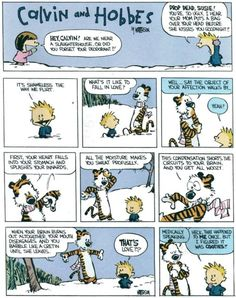 Calvin and Hobbes on the subject of love. They know how it really works.