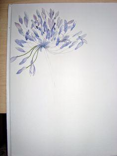 Watercolour Florals: Agapanthus