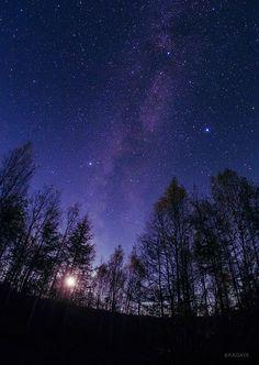 沈む月と夏の大三角。 縦の光の帯が天の川。右の明るい星がベガ、中央左の星がアルタイル、上やや右の星がデネブ。 (先日北海道美瑛町にて撮影)