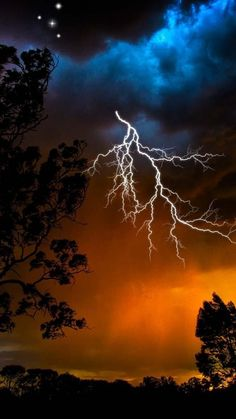 lightning, sky, trees, outlines, stars, bad weather, night, orange, birds