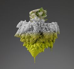 "Italian photographer Giorgio Cravero is the winner of the Hasselblad 2016 Contest in the category ""still Life"" for his project titled Colors Series. Color Photography, Amazing Photography, Life Photography, Image Fruit, Really Cool Photos, Fruits And Veggies, Vegetables, Natural Structures, Food Photography"