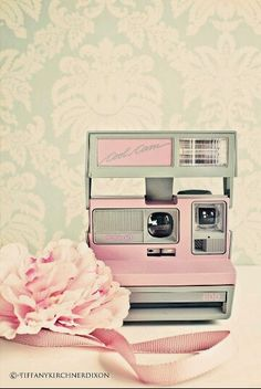 super cute retro kitsch and candy pink lovely photo poster art vintage Polaroid camera