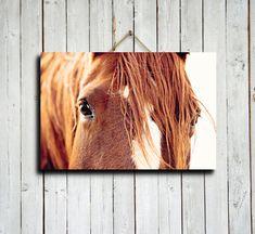 """Horses Eyes - 16x24"""" canvas print - Horse eyes decor - Horse decor - Horse photography - Horse art - Horse eyes art."""