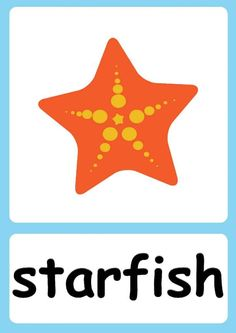 English Activities For Kids, Infant Activities, Baby Flash Cards, Flashcards For Kids, Kids English, Mothers Day Crafts For Kids, Sea Theme, Ocean Themes, Show And Tell