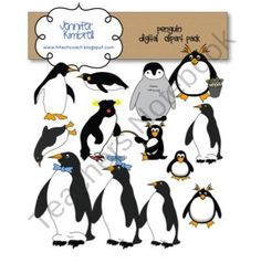 Penguin Clipart and Graphics $5.00