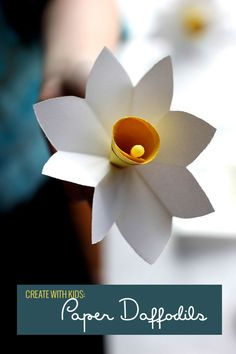 Paper Daffodil Wreath — Pars Caeli