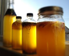 """Kombucha: Discover The Secrets Of This Wonder Tea. Kombucha is a symbiotic culture of bacteria and yeast (SCOBY) that forms a zoolgleal mat. This unique beverage has been used for over 2000 years to improve health and fight against infection and chronic disease. The Ancient Chinese called Kombucha the """"Immortal Health Elixer"""" as they revered it for its remarkable health benefits."""