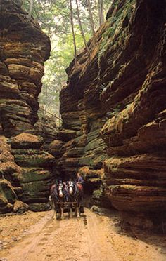 At LOST CANYON you enjoy the entire tour riding through a magnificent mile of cliff-walled gorges in comfortable yet quaint horse-drawn carriages which carry 15 passengers each. Wisconsin Dells, WI, USA