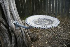 What to do with that old satellite dish??? Make a bird feeder