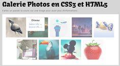 Créer une Galerie Photos en CSS3 et HTML5 #css3 #html5 #galerie