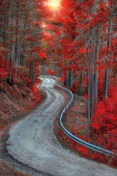 Beautiful Roads, Beautiful World, Beautiful Landscapes, Beautiful Places, Beautiful Artwork, Landscape Photography, Nature Photography, Photography Tips, All Nature