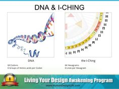 DNA & I-CHING the I-Ching 64 Hexagrams 6 Lines per Hexagram DNA 64 Codons 6 Groups of Amino acids per Codon