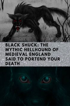 """He takes the form of a huge black dog, and prowls along dark lanes and lonesome field footpaths, where, although his howling makes the hearer's blood run cold, his footfalls make no sound."" People in Bungay, England know all too well what the Black Shuck can do. One town legend from 1577 says this giant hellhound killed two people who were kneeling in prayer after knocking down the church doors amid a flash of lightning."