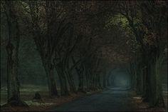 road to .... von Günter Rolf