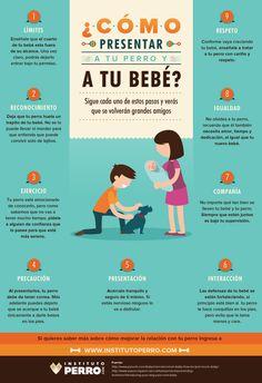 ¡Si tienes #mascota en casa no te pierdas estos prácticos #consejos! ;) #padres…