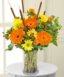 """""""Cat Tails and Callas"""" - A simple yet colorful way to send someone thanks"""