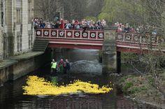 Hebden Bridge - UK - Annual Duck Race. Beautiful UK bridges: http://www.europealacarte.co.uk/blog/2013/04/29/uk-bridges/