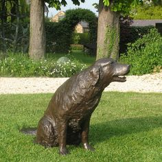Captivating Bronze Sculpture Of Golden Retriever
