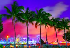Best Miami Cooking Schools ~ Find the Top Chef Culinary Arts Schools in MIA Miami Sunset, Best Sunset, Miami Beach, Palm Tree Sunset, Palm Trees, Culinary Arts Schools, Miami Skyline, Plenty Of Fish, Cooking School