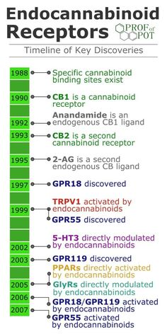 Part 1 of You've heard of the two cannabinoid receptors, and Actually, endocannabinoids can bind to at least 8 more receptors. By Professor of Pot The simple view of the endocannabinoid system is that there are two receptors, and Some may mention. Medical Cannabis, Cannabis Oil, Endocannabinoid System, Cbd Hemp Oil, Health And Wellbeing, Natural Medicine, In This World, The Cure, At Least