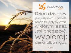 Dzień dzisiejszy jest wszystkim, co masz.   Osho   BezPowodu.com   #inspiracja #motywacja #cytaty #cytat