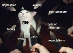 me vs depression & axiety & peer pressure & fear of rejection & expectations & panic & work & family