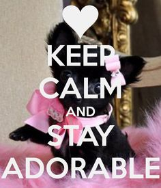 KEEP CALM AND STAY ADORABLE
