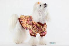 "Hoodie, Blouse ""Pumpkin Taste"", clothes for dogs Bel Cane A Pumpkin, Prints, Pattern, Etsy, Inspiration, Clothes, Outfit, Biblical Inspiration, Clothing"