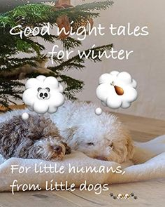 #wuffclickpic #cocoundmascarpone #goodnighttales #winter #English #petrasafphotography #hardcover #softcover #ebook